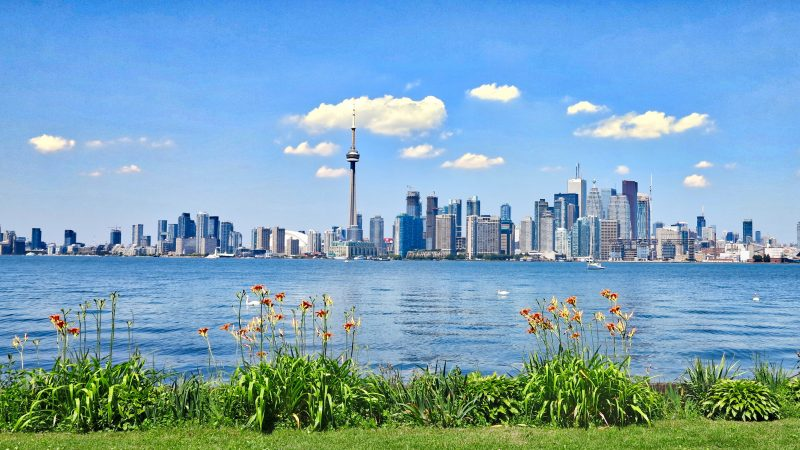 研究:5%多伦多人不会讲加拿大官方语言