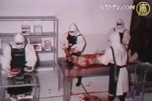 """""""731部队""""的实名簿公开 3607人曾在中国开展细菌战"""