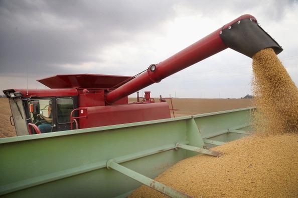 中國降低美大豆進口量  三月銳減近三分之一