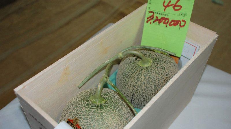 北海道札幌破紀錄 一對哈蜜瓜近3萬美元