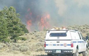 烧近4万英亩土地 美科州非法移民纵火被抓
