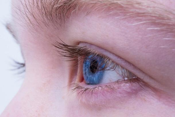 保护眼睛 眼科医师推荐3种好食物(视频)