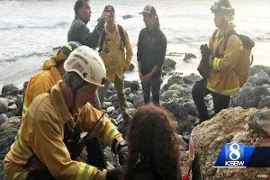 美奥勒冈州女子坠悬崖困8天 靠水箱水维持生命获救