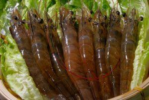 如何煮蝦不過老也不夾生 3個簡單撇步教給你(視頻)