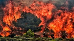 高温强风助燃 希腊野火焚村死伤已达74死187伤