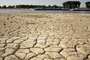 欧洲热浪 莱茵河下游见底 船运运费暴涨