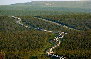 阿拉斯加州6.4強震 深度僅9.9公里尚未傳出災情