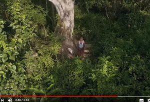 一個人種出的森林 轟動全世界(視頻)