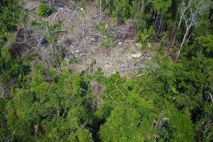 空拍亞馬遜雨林 直擊與世隔絕神秘部落