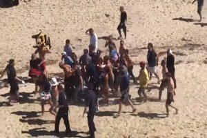 美麻州衝浪客遭鯊魚咬死 目擊者:情節如《大白鯊》