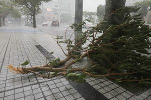 颱風潭美強襲沖繩 至少7傷逾12萬戶斷電