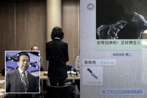 傳孟宏偉妻被秘密轉移籌備發布會 北京欲引渡