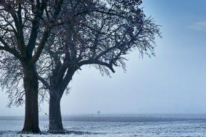 零下71度!連熱水都會結冰的地方 世界上五個極端地區