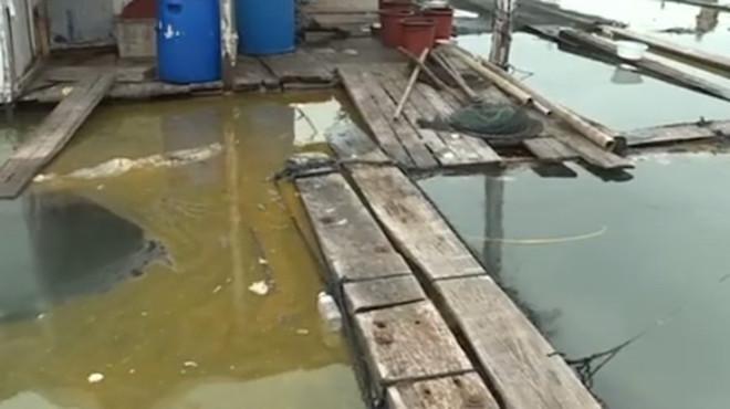 福建泉州7噸毒「碳九」洩漏 現場視頻曝光(視頻)