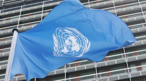 張林:北約應該取代聯合國