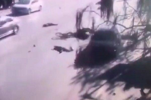 遼寧車撞小學生嫌犯系官二代 被捕稱「啥都認」(視頻)