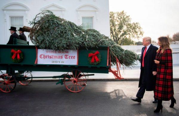 奥巴马圣诞树挂毛像遭批 爱国主义现重返白宫