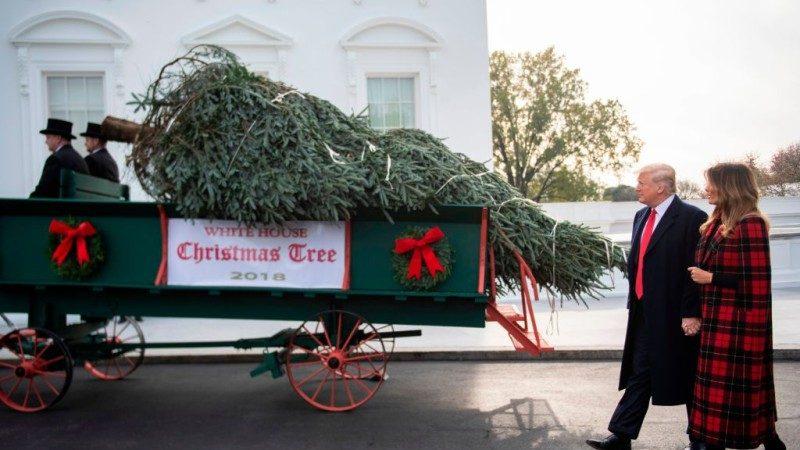 奧巴馬聖誕樹掛毛像遭批 愛國主義現重返白宮