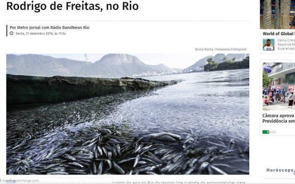 熱浪襲巴西 里約熱內盧湖泊魚群暴斃逾55噸