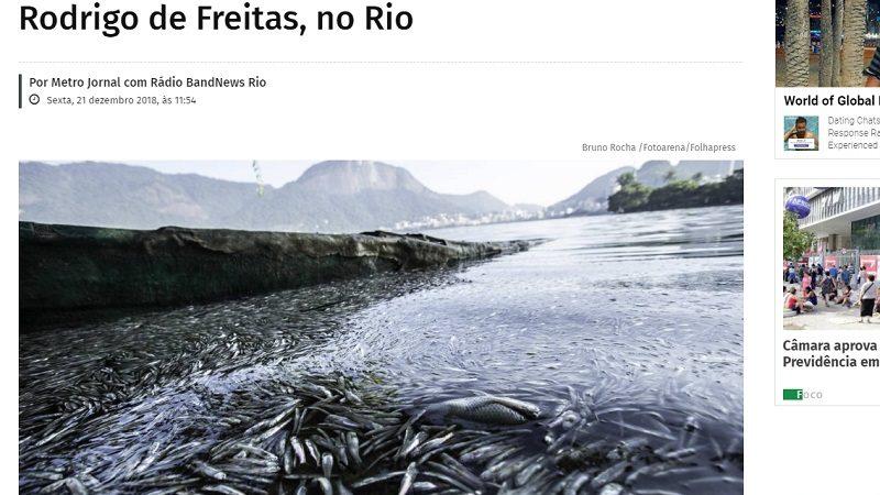 热浪袭巴西 里约热内卢湖泊鱼群暴毙逾55吨