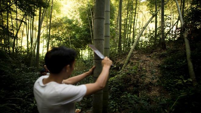 四川兩小學生仿「野外求生」攜地理課本「探險」被困