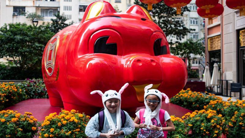 """央视春晚猪成敏感词  """"猪年没猪""""引热议"""