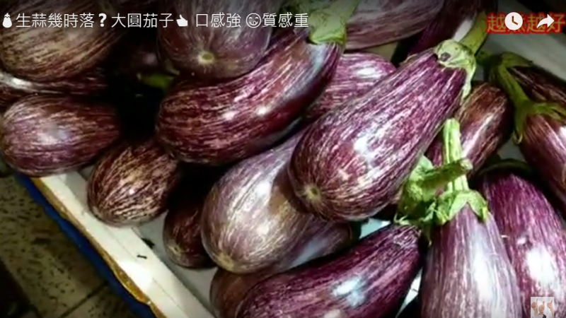 红烧大圆茄子 口感强 素食超美味(视频)