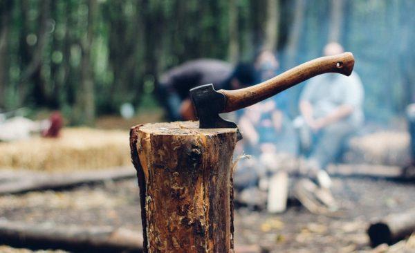 俄高官警告將用關稅懲罰中企盜伐俄國森林