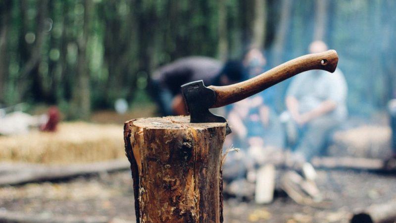 中企大肆盗伐木材激怒俄国 俄部长:拟用关税惩罚