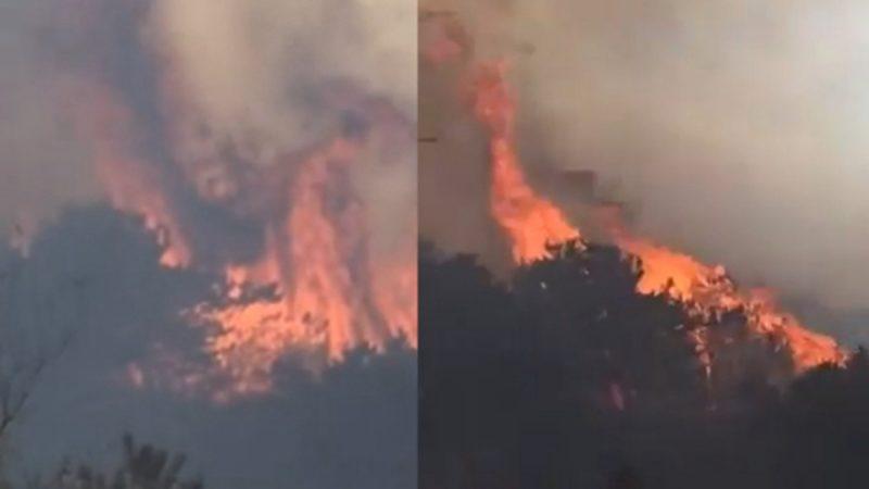 连环爆炸惊魂未定 北京山西突发森林大火