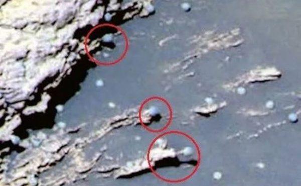 """火星探测车拍到""""蘑菇""""图片 引发科学家热议"""