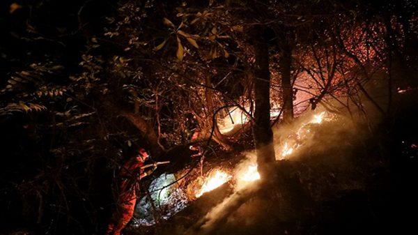 陳思敏:涼山大火第31人死訊與中共最怕之火
