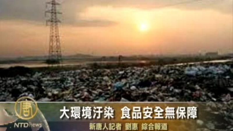 张林:中国污染再次加剧