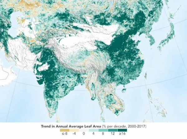 鄭義:從兩幅衛星圖看中國森林的毀滅和自然復甦