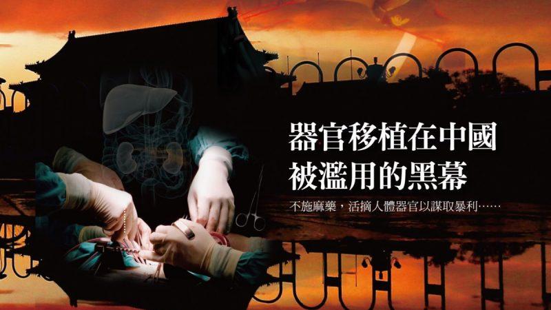巴媒:中国非法婚介所贩卖巴妇女 强迫卖淫卖器官