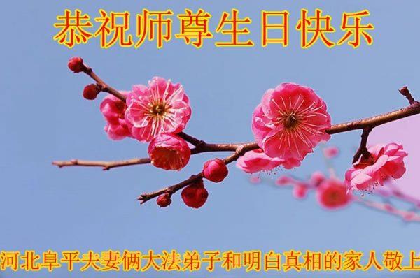 中国各地民众支持法轮大法 敬贺李洪志大师华诞
