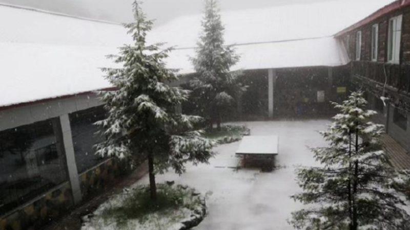奇景!立夏刚过 重庆一景区落雪10小时