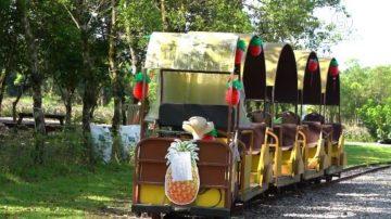 全台唯一曳引机小火车 富兴成旅人口袋名单