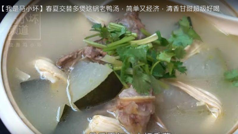 清香甘甜老鸭汤 超级好喝(视频)