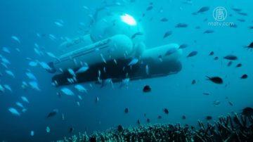 Uber新花样 坐潜水艇欣赏海底世界