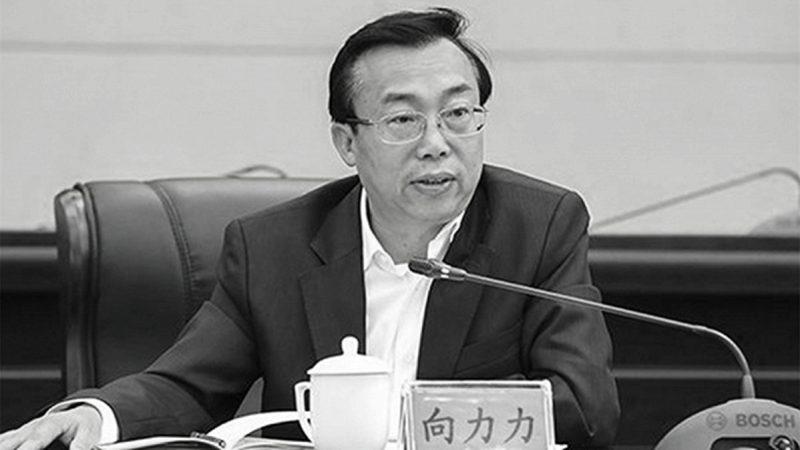 """秦光荣投案仅8天 """"老搭档""""落马"""