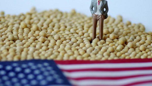 美媒調查:農業州仍堅定支持川普