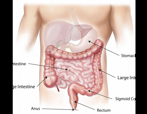 饭后4种表现 当心胃癌前兆