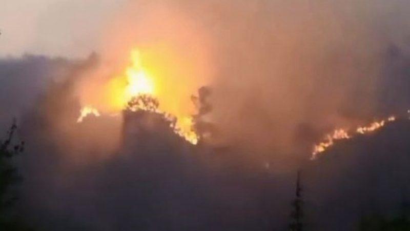 雲南再爆山火 連續兩場2000餘人緊急撲救