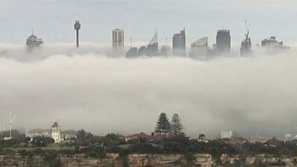 大雾笼罩 悉尼能见度低航班大乱