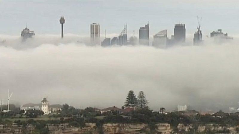 大霧籠罩 悉尼能見度低航班大亂
