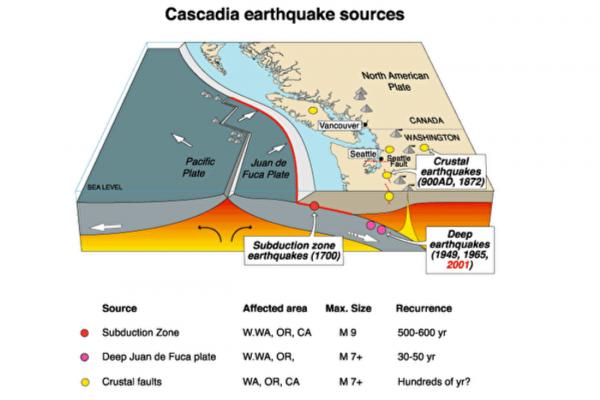 新方法在地震发生十几秒内判断震级