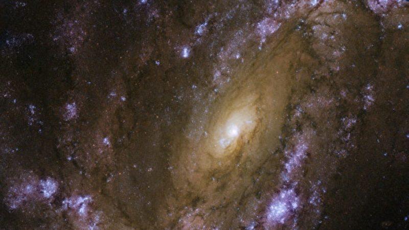 哈勃最新照片 邻近星系恒星频繁爆炸