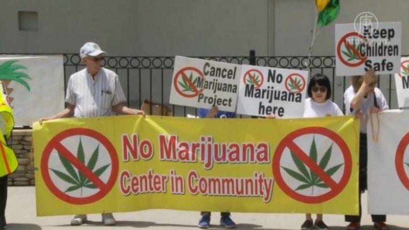 徐行:南加大麻之争成了华人之间的较量