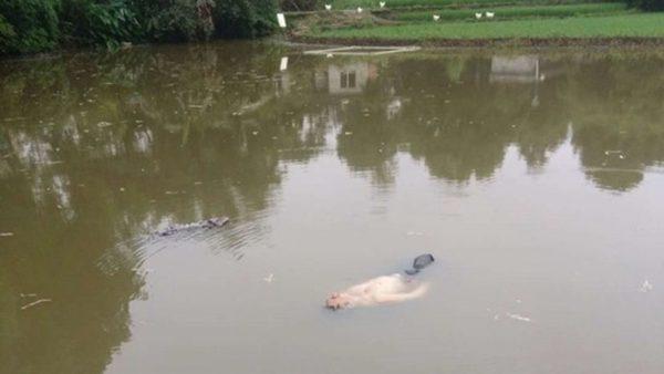 四川池塘惊现浮尸 捞上岸大吃一惊